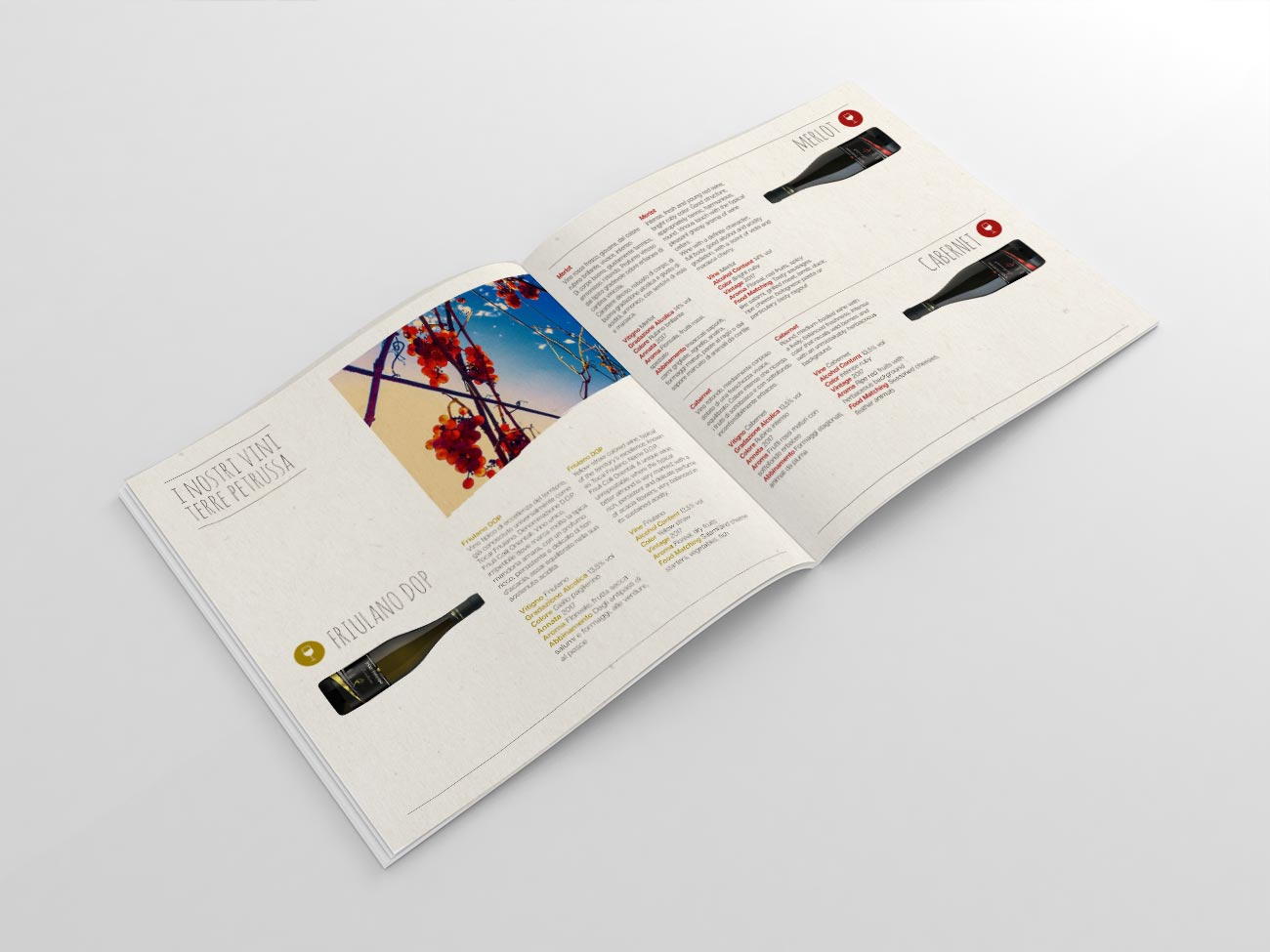 Agriturismo Terre Petrussa Wine & Beer. La brochure. Interno